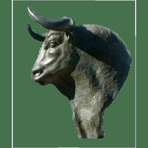 Toro-de-Prueba